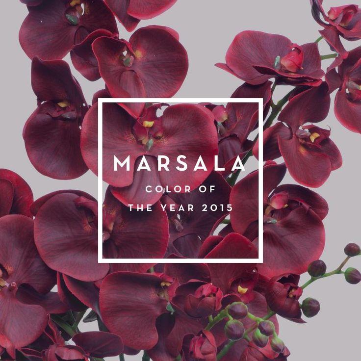 marsalla4