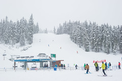 Fresh snow and no lift lines