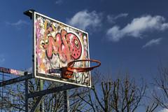 painted hoop