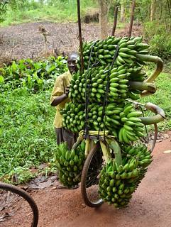 Banana Bike, Uganda