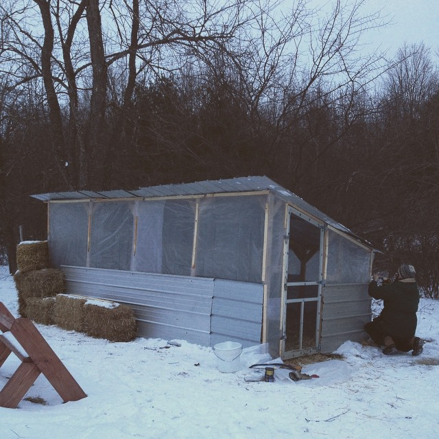There. @bradstreetfarmer completed the roof and wrapped the duck pen in poly with the goal of keeping the ducks mostly out of 50+ mph winds and 24+-inches of drifting snow during  #juno2015 . #farmlife #207gram #maine #mattnoyes #midcoastmaine #waldocount