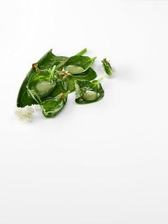 Maridaje con espinacas guisadas, leche de almendra y aceite de oliva