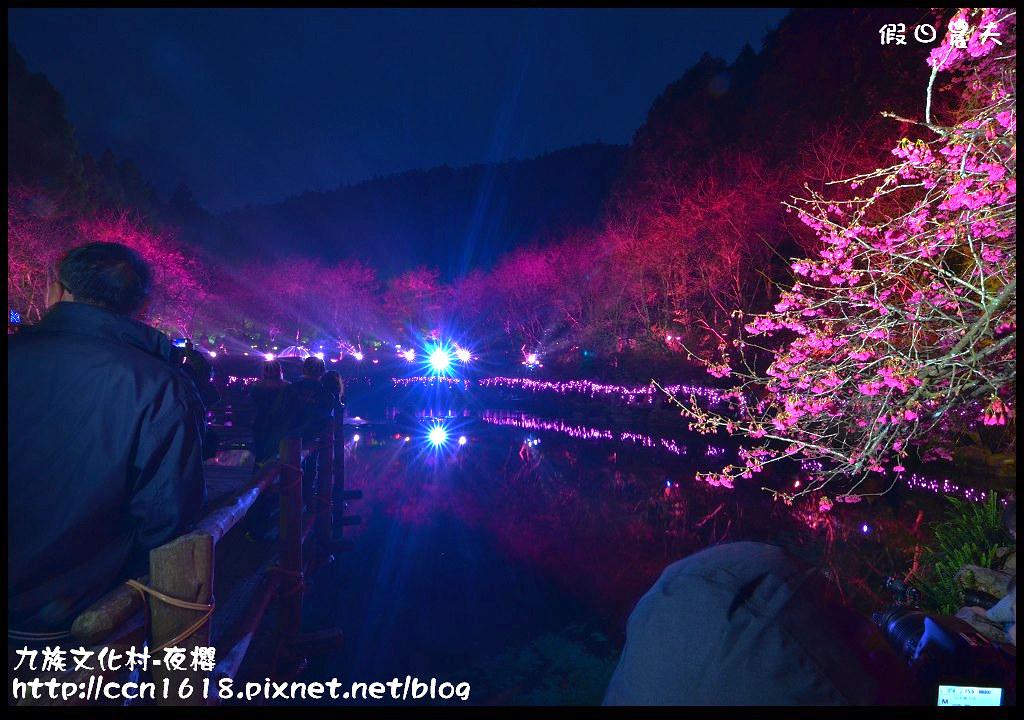 九族文化村-夜櫻DSC_4937