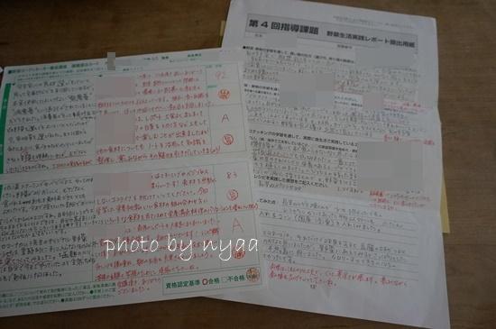 yasai-code3