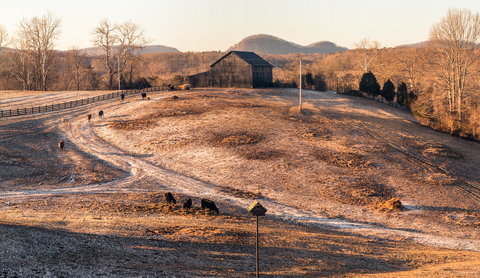 photo of farm in Irvine, KY