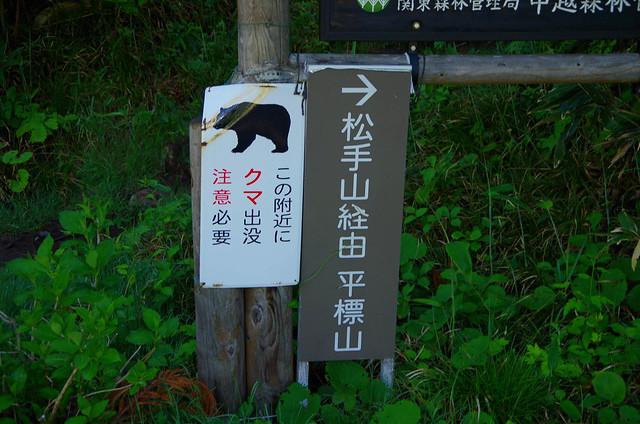 20150607-仙ノ倉山S-0005.jpg