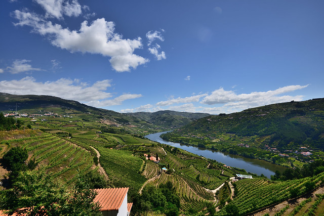 View from Mesão Frio on the Douro valley, Portugal