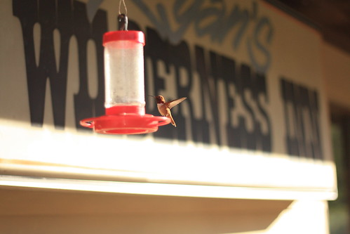 Ryan's Wilderness Inn
