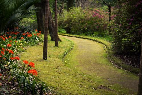 Terra Nostra Garden (Azores)