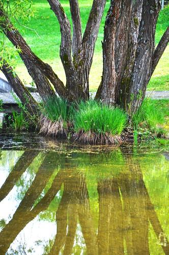 Spiegelung am Maltschachersee