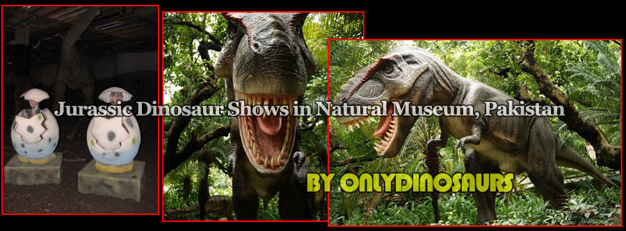 Jurassic Dinosaur Animatronic as Exhibits of the museum