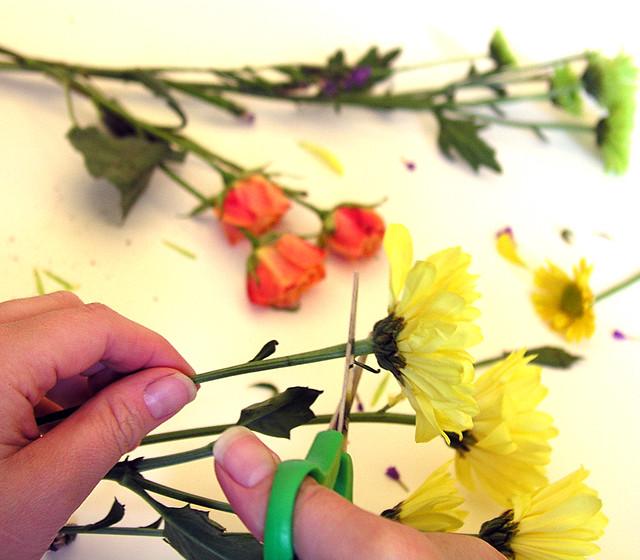 6.17.13 flowers