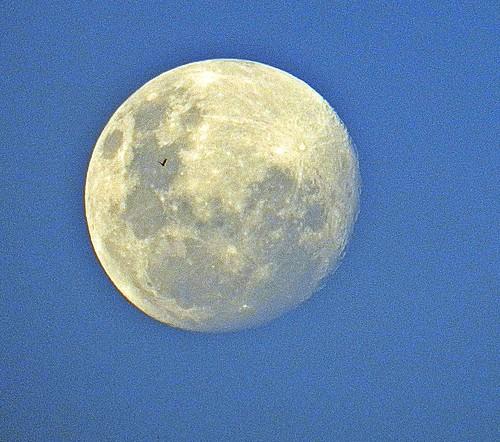 luna hacia el perigeo