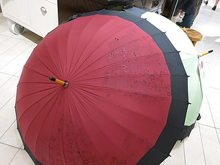 蛇の目 浮絵傘