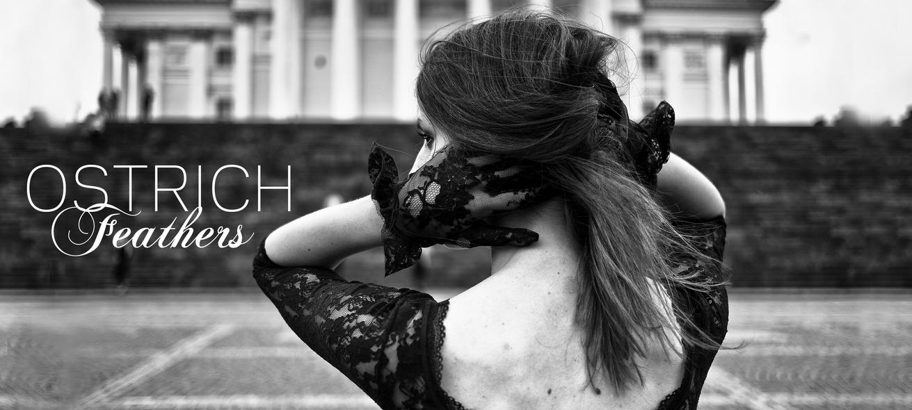 ostrichfeathersblog