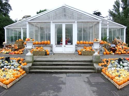 Pumpkin Exhibition, Waterlily House, Royal Botanic Gardens, KEW @ 19 October 2013 (1 of 3)