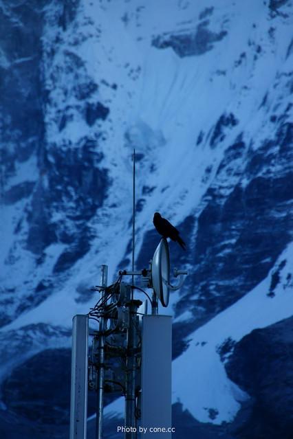 雪山和基站和乌鸦