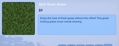 Dark Rural Grass