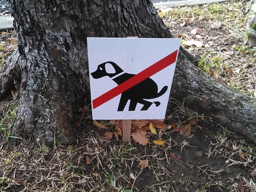 No Dogshit (graphic)