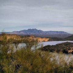 The view on top. #CoffeeKen #CallistoMorgans #arizona #mountains #morganhorses #mountainquest #wildernessquest #visitmesa