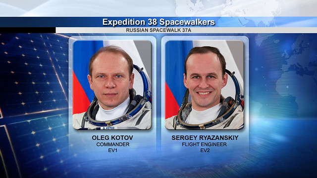Expedition 38 Spacewalkers