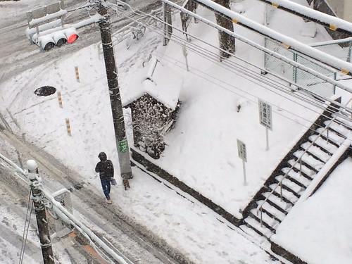 2014年2月8日の雪 夕方