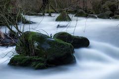 Rocks in the water