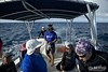 WildQuest Whale Retreat - 2014/2