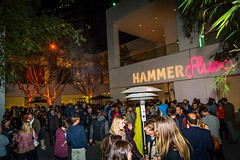 Flux Screening @ the Hammer 2.13.14