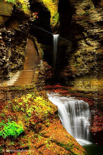 statepark autumn red ny newyork green fall nature water up leaves stairs contrast season outdoors photo waterfall rocks unitedstates image walk steps picture down glen foliage photograph valley manmade gorge watkinsglen interation hke 2013 danielnovak