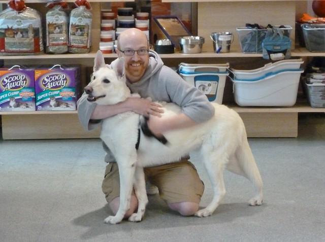 Dog Cassie Adoption Maryland Animal Control Montgomery