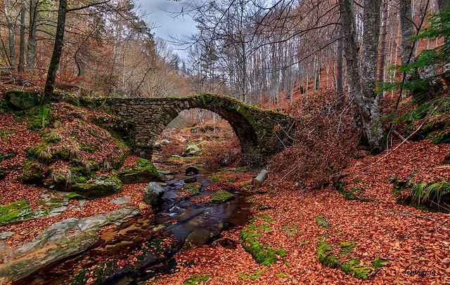 '...ρουφάω χρώματα και αρώματα...' © ydrokritis.blogspot.gr