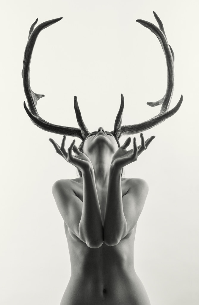 Antlers and nude chicks picture