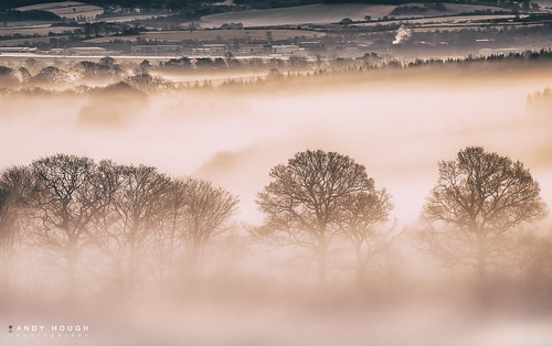 morning trees england sunlight mist golden unitedkingdom sony wallingford a99 sonyalpha andyhough slta99v andyhoughphotography tamronsp70200di
