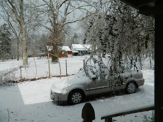 Sunshine on the Snow