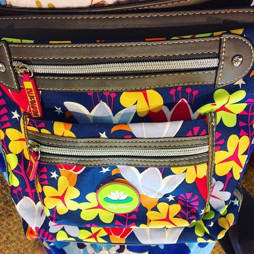 """New"" purse (thanks eBay) by Lily Bloom. Bonus: lots of compartments. But will I remember what I put in them?"