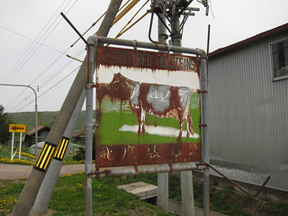 Fine Holsteins