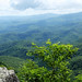 Blowing rock Panorama