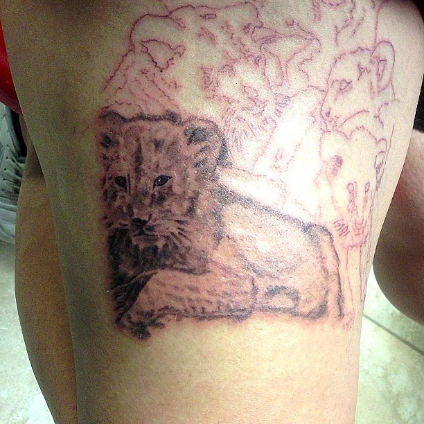 Grey wash lion cub tattoo up close fun times for Washing a new tattoo