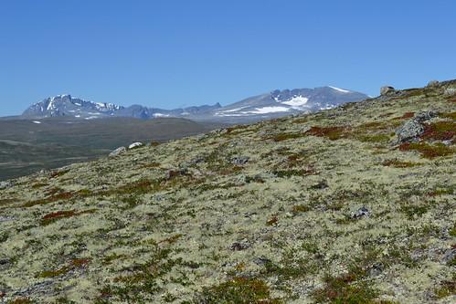 sky snow mountains norway tundra dovrefjell alpinetundra scandinavianmontanebirchforestandgrasslands