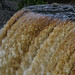 Tahquamenon Falls by Cochran.Images