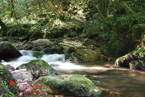 Río Bidasoa