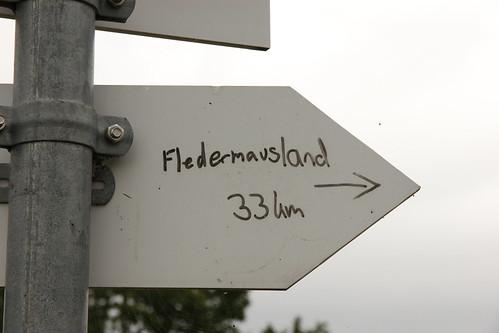 Fledermausland / bat country