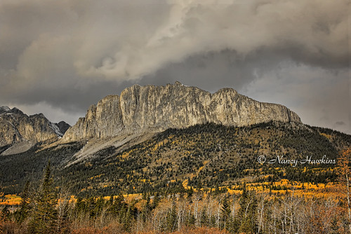 Mount John Laurie by Nancy Hawkins