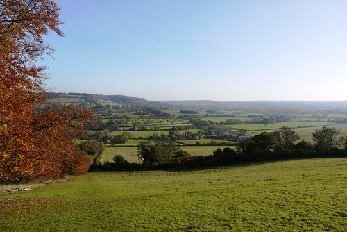 From Meenfield Wood looking towards Otford