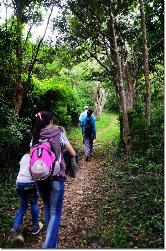 帽子山登山步道 2