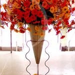 ziggy stand Gerber daisies