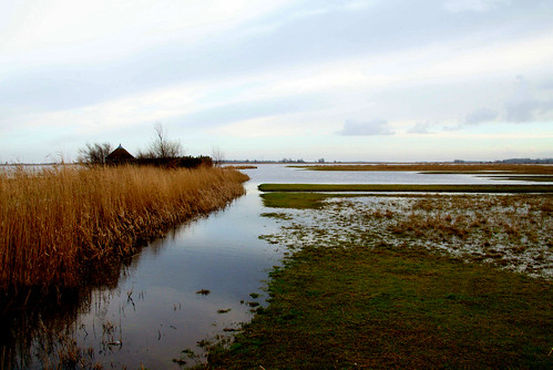 lake nationalpark december ngc thenetherlands friesland lauwersmeer birdobservatory 2013 vogelkijkhut atsjebosma
