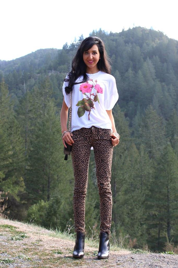 Wild Rose 2