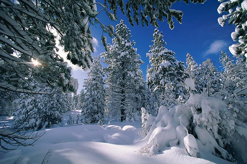 Skiing and Snowboarding; Winter Outdoor Recreation in British Columbia, Canada